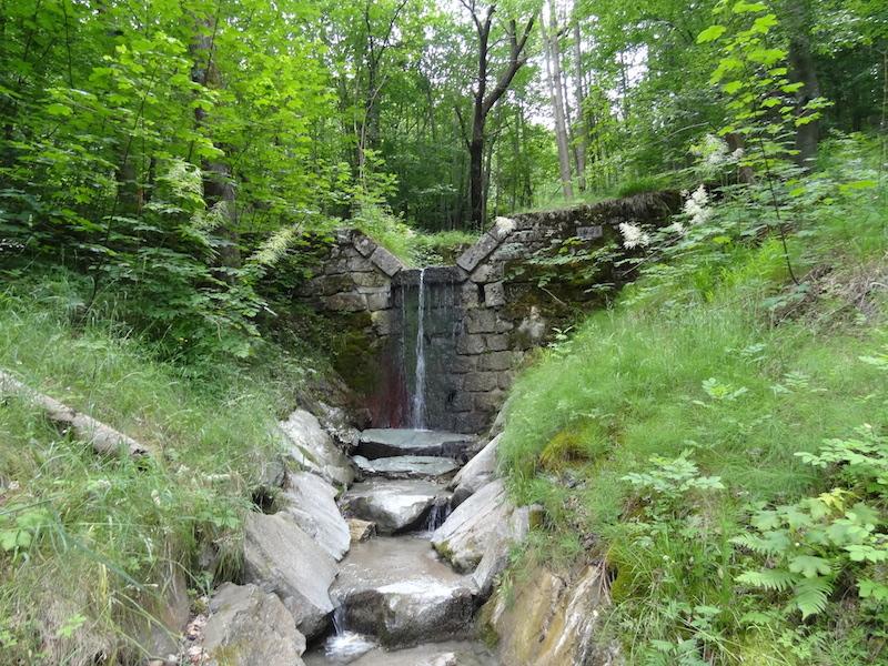 Gemeinde Reichenau an der Rax: Wilbachbegehungen und Überwachung der zugehörigen Schutzbauwerke 2015 bis 2017