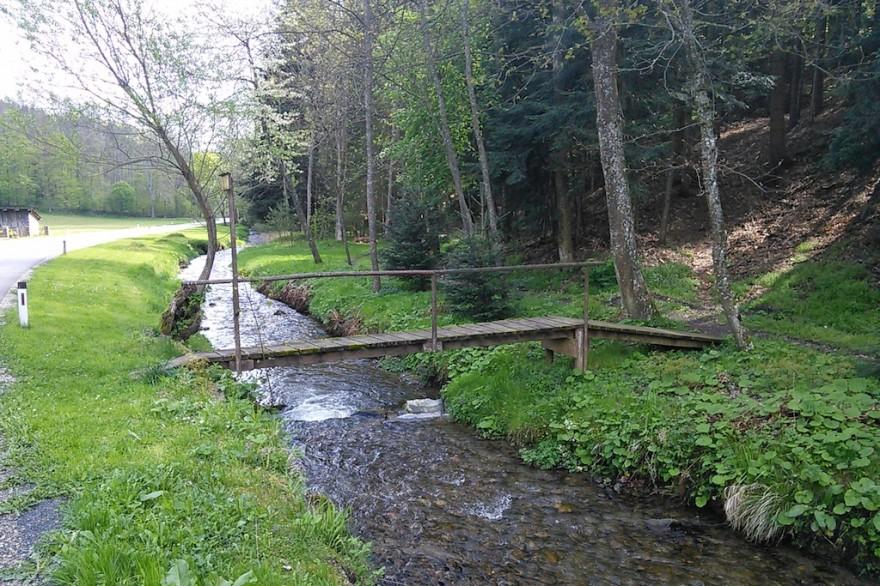 Gemeinde Lichtenegg: Wildbachbegehungen und Überwachung der zugehörigen Schutzbauwerke 2014